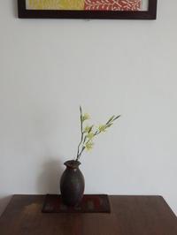 グラジオラス トリスティス コンコロール - 暮らしと植物のブログ