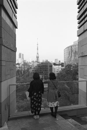 Walk around Tokyo in spring #4. - SunsetLine