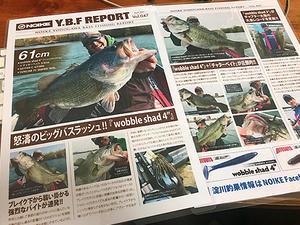 Y.B.F REPORT vol.047 - WaterLettuceのブログ