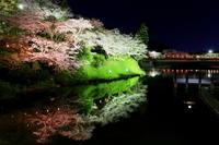 夜桜 - はじまりのとき