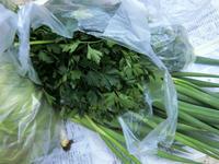 野菜いっぱい - 号号日記