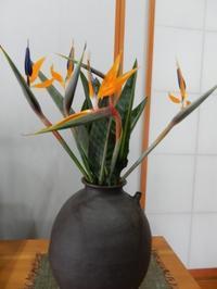 お花は道の駅で買っています - ご機嫌元氣 猫の森公式ブログ