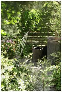 春の光りに包まれるガーデン - natu     * 素敵なナチュラルガーデンから~*     福岡県で庭の施工、外構造りをしてます