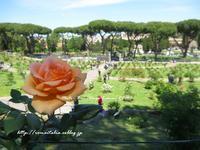 """""""ローマのバラ園、開園♪2017 ~ Rome Rose Garden:4/21-6/18~ - ROMA  - PhotoBlog -"""