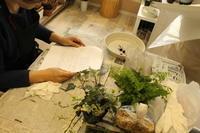 苔玉作りのワークショップのご報告 4.22 - 北赤羽花屋ソレイユの日々の花