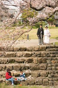 花見日和 - YUKIPHOTO/平松勇樹写真事務所