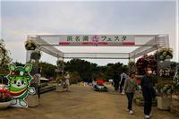 浜名湖花フェスタ最終のデジブックを公開しました。 - 写真撮り隊の今日の一枚2