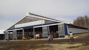 新築牛舎……最新の設備・施設 - 木遊人masamiの十勝lifelog