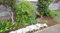 前庭てんこ盛り - うちの庭の備忘録 green's garden