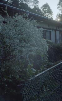 冬の朝 - 67spirit