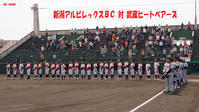 BCリーグ・新潟アルビレックスBC対武蔵ヒートベアーズ - the best shot Ⅳ
