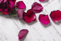薔薇の記憶 - たなぼた