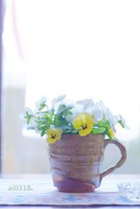 賑やかカップ。 - Yuruyuru Photograph