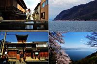 長浜曳山祭と湖北の桜 - あ お そ ら 写 真 社
