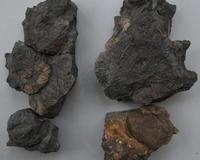 化石の北前船(その10) - ふぉっしるもしてみむとてするなり