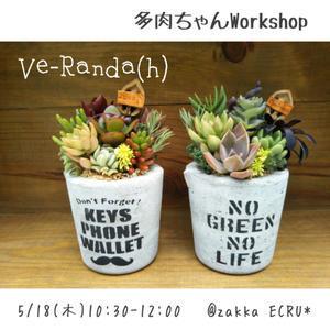 多肉ちゃんWorkshopのお知らせ★ - zakka&cafe ECRU*