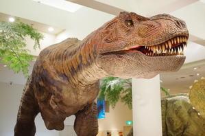 愛媛県総合科学博物館 - 息子と写真がすき。