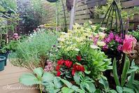 春の花が咲き乱れる庭 - 毎日がばら色