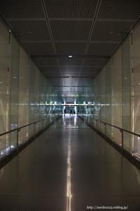 reflection、reflection… - Noriko's Photo  -light & shadow-