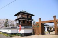 桜巡り・史跡田中城下屋敷♪ - happy-cafe*vol.2