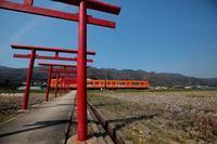 〆は此処で。 - 山陽路を往く列車たち