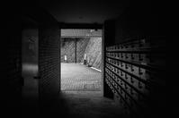 桜端月 寫誌 ⑮ exit - le fotografie di digit@l