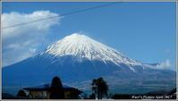 富士山と浅間神社 - 野鳥の素顔 <野鳥と・・・他、日々の出来事>
