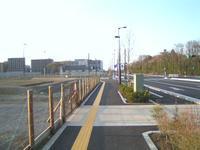 立川基地跡地の新しい道の道端で - 多摩の中ほど