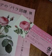 ルドゥーテの「バラ図譜」展 - トールペイント&クラフト 〔 すみれの森工房 〕