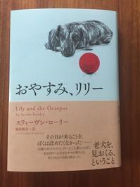 読書『おやすみ、リリー』 - 海の古書店