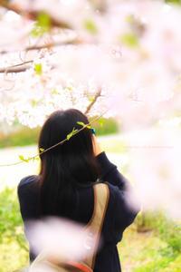 愛しき日々 - koharu*biyori