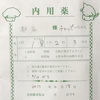 嘔吐を繰り返すチャッピーちゃんを近所の動物病院へ - Lucky★Dip666-Ⅲ