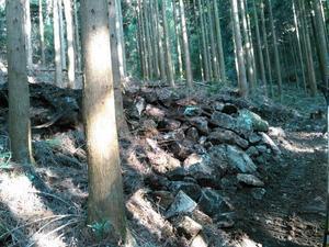ヘアピンカーブ作りに丸一日かかりました・・・ - 自伐型林業 施業日記