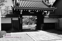 鞍馬口通から寺之内通を行く - 写楽彩