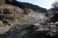 谷間の村に咲く  - 風の彩り-2
