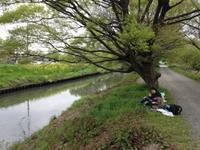 【活動レポ】スケッチ遠足東浦和 4/22 - 造形+自然の教室  にじいろたまご