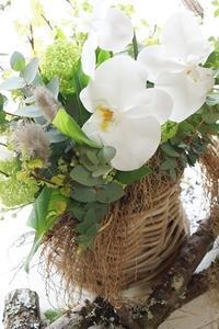 根つきスズランのブーケとコンポジション - お花に囲まれて
