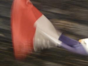 フランスが泣いている - hibariの巣