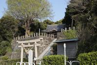 熊野神社 ~荒崎~ - 鴉の独りごと