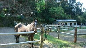 広島から - 土佐黒潮牧場「牧場日記」