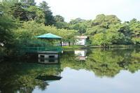 新緑の大宮公園 早朝散歩 - さいたま日記