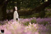 princess mononoke returns - 箱庭の休日