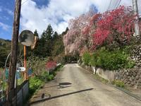 石の道しるべを見るために御林峠へ - なのだの登山日誌