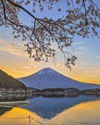 2017.4.20桜とダブルダイヤモンド富士(田貫湖北) - ダイヤモンド△△追っかけ記録