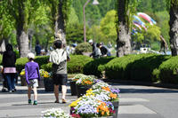 水元公園 - Taro's Photo