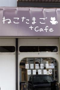 ねこたまご+cafe 4月29日オープンです。 - ekkoの --- four seasons --- 北海道