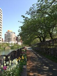 福岡・春のキューバ音楽ワークショップ最終日です - マコト日記
