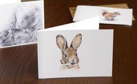 かわいい動物たちのミニカード 母の日のプレゼントにおすすめ! - ブルーベルの森-ブログ-英国カントリーサイドのライフスタイルをつたえる