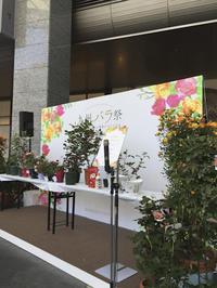 九州バラ祭 - 朝寝・夜更かし・つまみ食い
