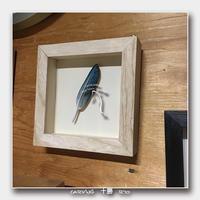 羽根 !! - 十勝 Trout Carving Gallery II